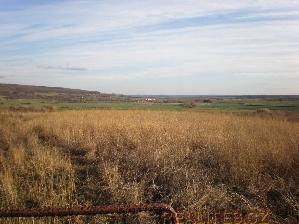 Prodej Pozemek Rabakov