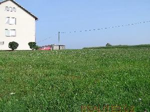 Prodej Pozemek Ratiboř u Jindřichova Hradce