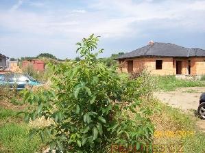 Prodej Pozemek Čelechovice na Hané